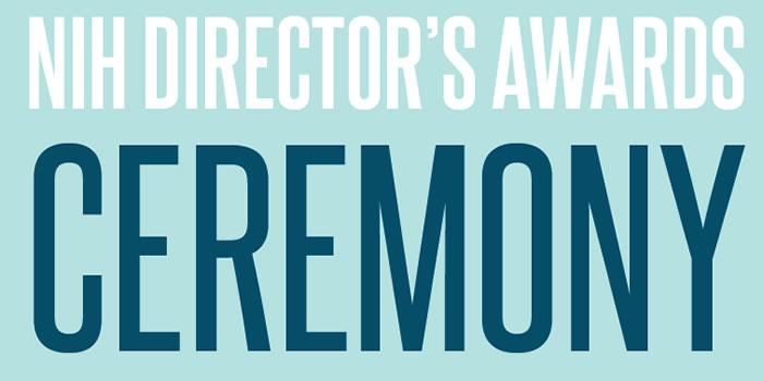 Directors Awards Banner