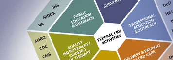 A hexagon graphic shows how various federal departments, agencies, and institutes contribute to the multifaceted and interconnected response to CKD. The hexagon is divided into six triangles representing six initiatives: public education and outreach, surveillance, professional education and outreach, delivery & payment of CKD care, scientific research, and quality improvement/evidence of therapy. Participating departments, agencies, and institutes are listed in the appropriate triangles.