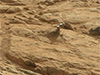 A shiny-looking Martian rock is visible in this image taken by NASA's Mars rover Curiosity's Mast Camera (Mastcam) during the mission's 173rd Martian day, or sol (Jan. 30, 2013). Image credit: NASA