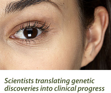 Scientists translating genetic discoveries into clinical progress