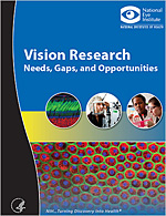 Vision Research: Needs, Gaps, and Opportunities