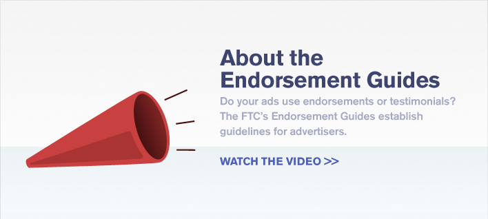 About the Endorsement Guides