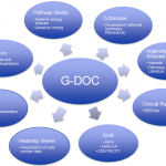 G-DOC chart