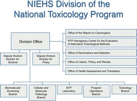 National Toxicology Program Organization Chart