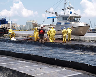 Gulf of Mexico Oil Spill Cleanup