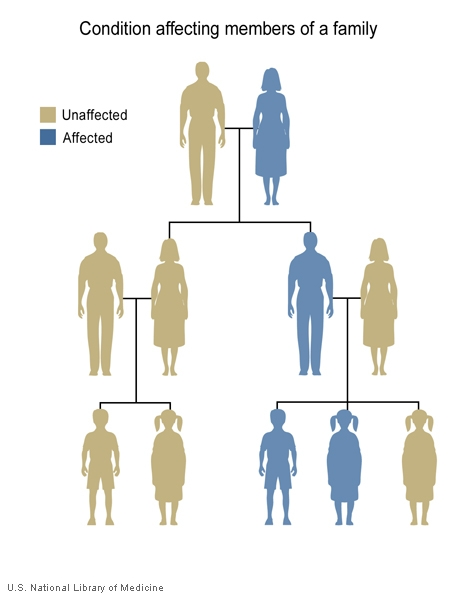 Some disorders are seen in more than one generation of a family.