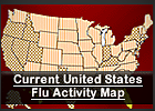 A U.S. map includes the text 'Current United States Flu Activity Map'