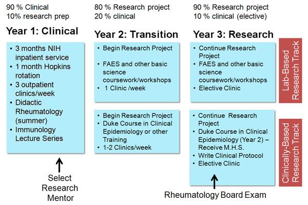Description of activities  per year in the rheumatology training program