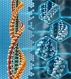 Epigenomics researchers publish new study linking genetic variation and gene regulation in many common diseases