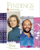 Findings - March 2002