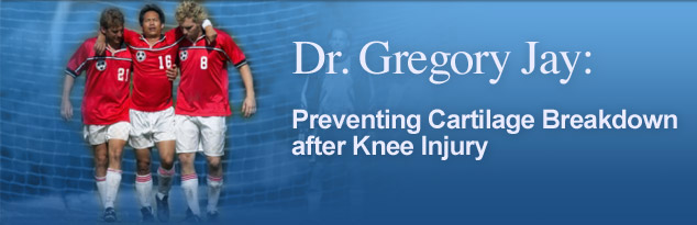 Dr. Gregory Jay: Preventing Cartilage Breakdown after Knee Injury