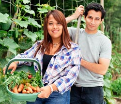 Man and woman in garden with veggie basket