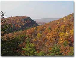 A picture of mountain in fall