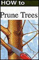 How to Prune Trees cover