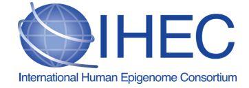 Epigenomes around the world: International Human Epigenome Consortium