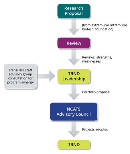 Review Process Diagram