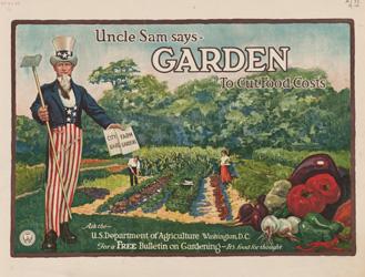 Garden to Cut Food Costs
