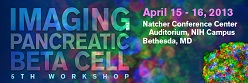5th NIH/Juvenile Diabetes Research Foundation Workshop--Imaging the Pancreatic Beta Cell