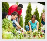 Teens working in a garden