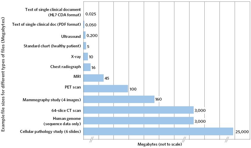 Exhibit 10-B:  Health Data File Sizes