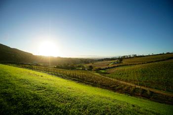 Photograph of a rural landscape.