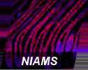 NIAMS