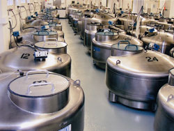 Cryogenic tanks filled with liquid nitrogen and millions of vials of frozen cells. Credit: Coriell Institute for Medical Research.
