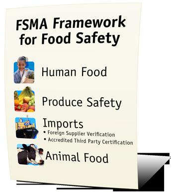 FDA Strengthening Our Food Safety Foundation - (JPG)