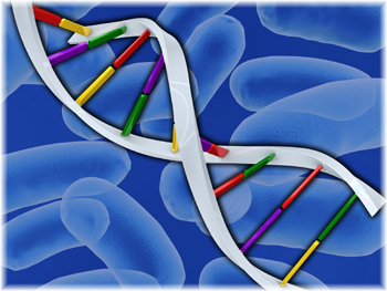 Scientists will be studying the genetic makeup of bacteria that cause foodborne illness.