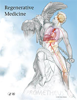 Regenerative Medicine 2006 cover graphic