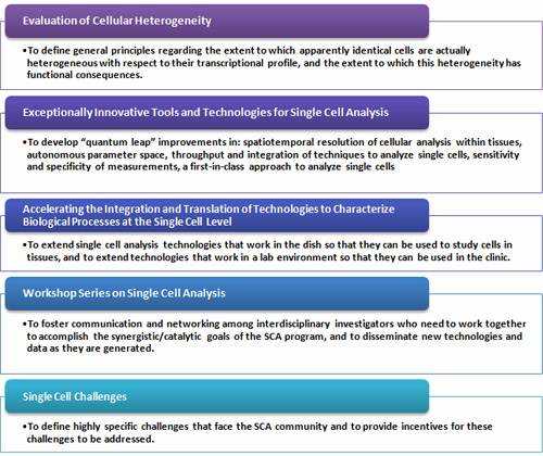 Evaluation of Cellular Heterogeneity, Exceptionally Innovative Tools and Technologies for Single Cell Analysis, Accelerating the Integration and Translation of Technologies to Characterize Biological Processes at the Single Cell Level, Workshop Series on Single Cell Analysis and Single Cell Challenges