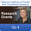 National Institute of Dental and Craniofacial Research: Research Grants