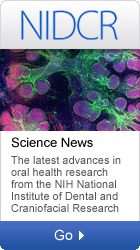 NIDCR: Science News-The latest advances in oral health  research from the NIH National Institute of Dental and Craniofacial Research