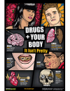 Picture of Drugs + Your Body: It Isn't Pretty (Teaching Guide) Poster