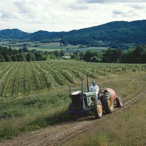 farmer on tractor in field