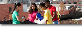 A group of teens organizing recyclables