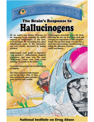 Picture of Mind Over Matter: The Brain's Response to Hallucinogens
