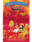 Picture of Mind Over Matter: The Brain's Response to Opiates