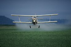 Photograph of an airplane spraying pesticide on a field