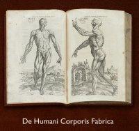 Vesalius' De Humani Corporis Fabrica open book
