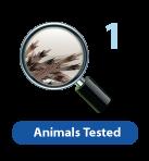 Animal Testing Icon