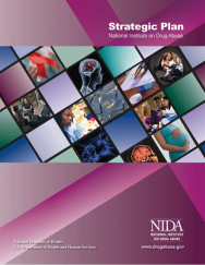 Picture of NIDA Strategic Plan