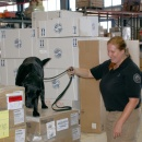 K9 Package Inspection (TSA)