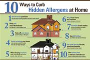hidden home allergens infographic