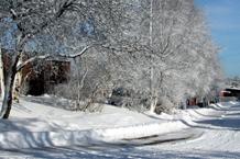 Un camino cubierto con nieve