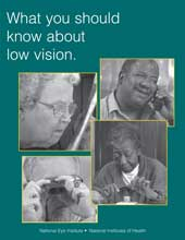 image of What You Should Know About Low Vision brochure