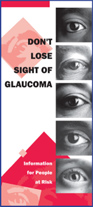 image of Don't Lose Sight of Glaucoma brochure