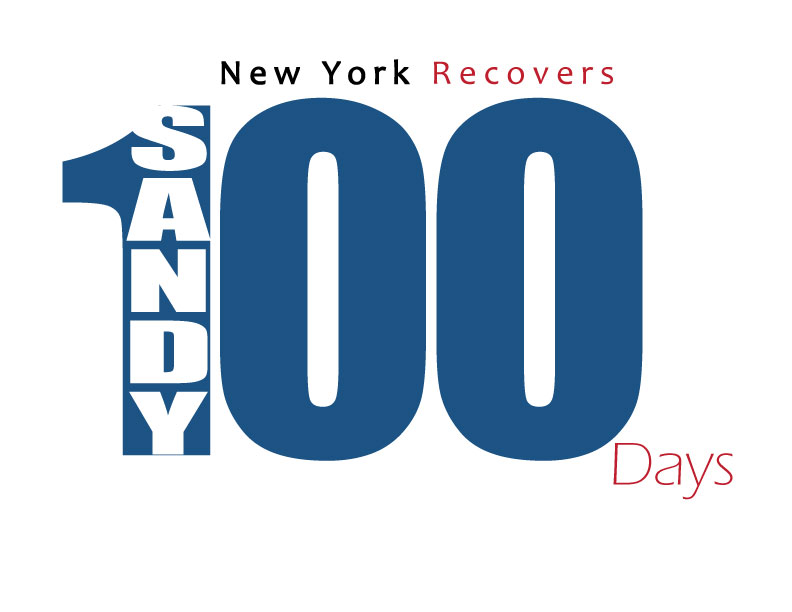 Visual logo of 100 Days After Sandy in NY