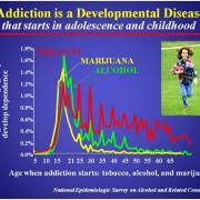 Addiction is Developmental Disease chart