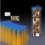 Image of carbon nanotubes